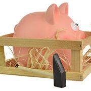 Break-pour-ouvrir--Piggy-Tirelire-en-Foin-Abri-de-jardin-avec-marteau-0-0