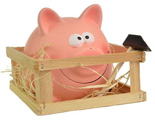 Break-pour-ouvrir–Piggy-Tirelire-en-Foin-Abri-de-jardin-avec-marteau-0