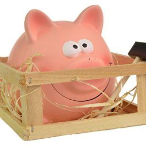 Break-pour-ouvrir--Piggy-Tirelire-en-Foin-Abri-de-jardin-avec-marteau-0