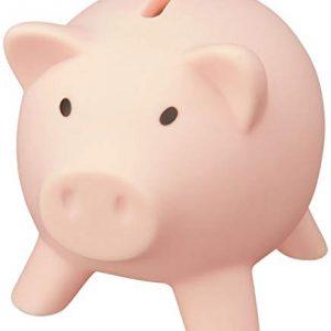 noTrash2003-Tirelire-Cochon-dconomies-de-largent-Dcoration-Cochon-Piggy-Miss-Verch-Couleurs-Light-Pink-0